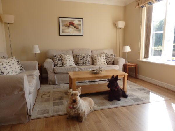 Pet friendly holiday apartment Whitby, Whitby holiday let with parking, Riverside apartment Whitby