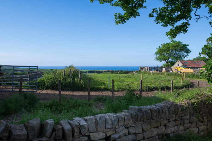 Great sea views from the garden at Chapel Cottage