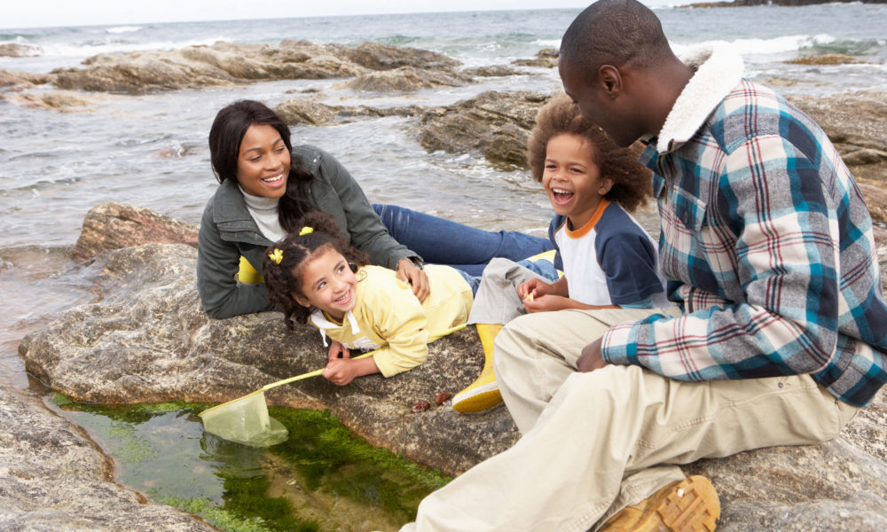 A family rockpooling